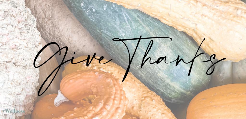 give thanks wellness pediatrician